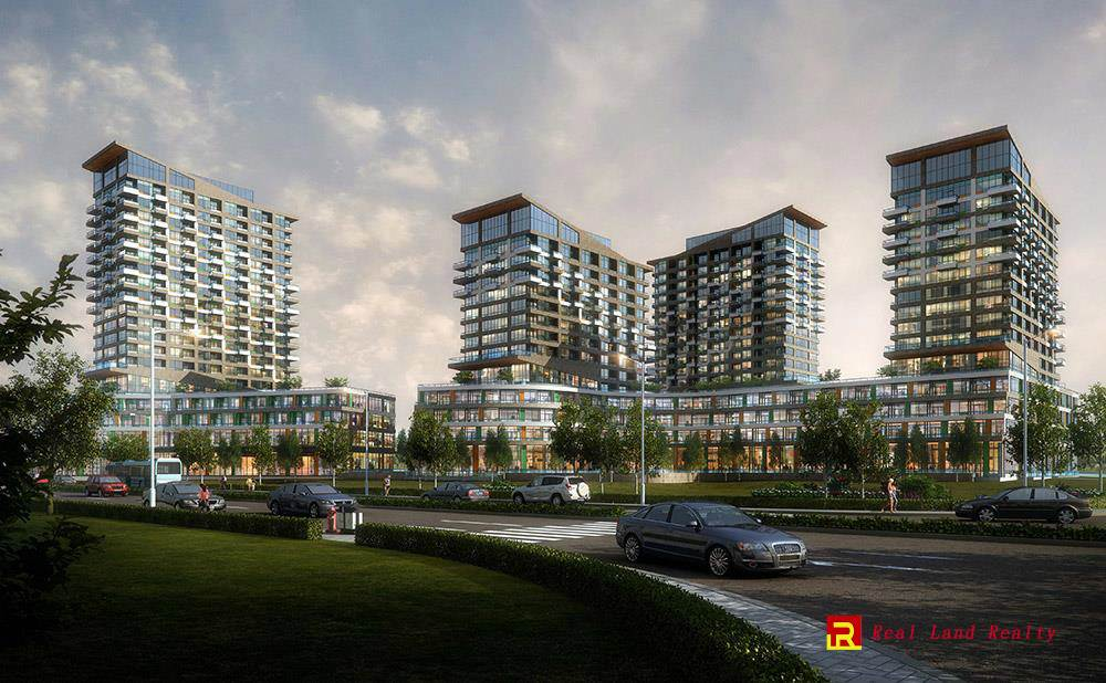 Oak & Co. Condos By Cortel Group photo 2