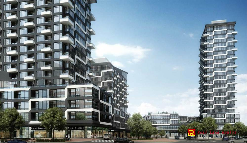 Oak & Co. Condos By Cortel Group photo 4